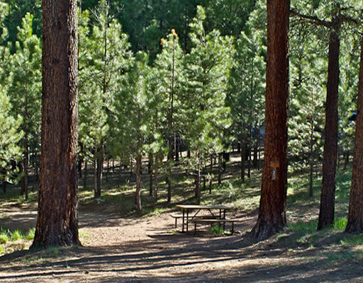 Kaibab Camper Village | RV & Tent Campground North Rim of